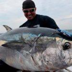 Berikut Fakta Mengenai Ikan Tuna Milik Indonesia