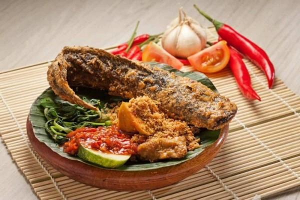 Manfaat Ikan Lele Untuk Kesehatan