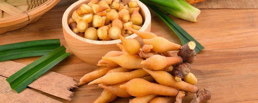Manfaat Herbal Temu Kunci Bagi Kesehatan Tubuh