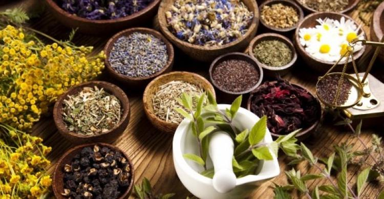 Tanaman Herbal Untuk Mengatasi Disfungsi Ereksi